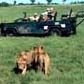 Luxury Fly-in Safaris | Air Safaris in Africa