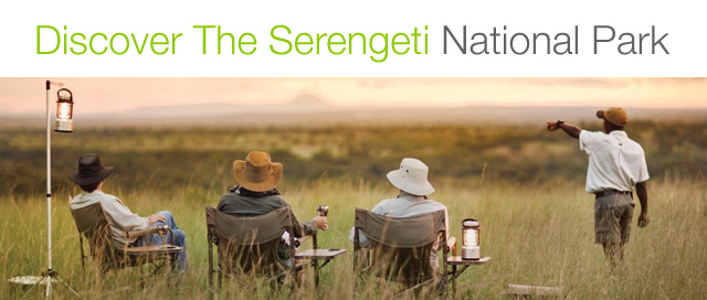 serengeti travel guide