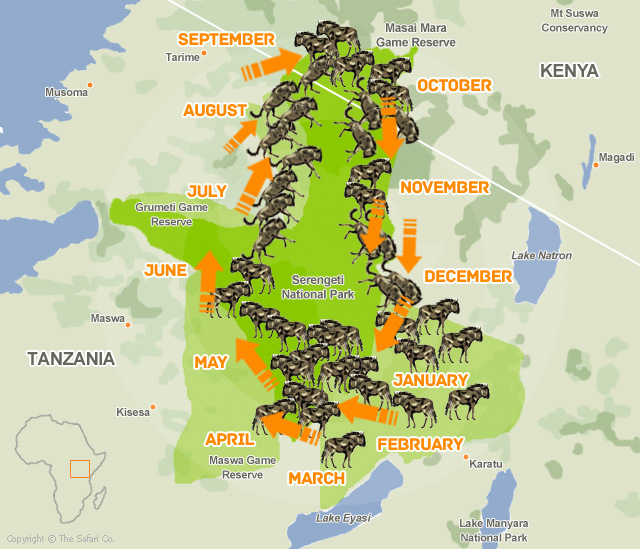 map of the great wildebeest migration - east africa