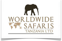 Earthlife Expeditions - Serengeti to Zanzibar